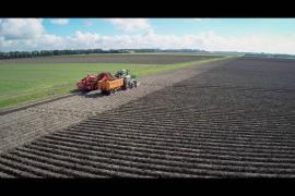 Land- en tuinbouw in de zomer